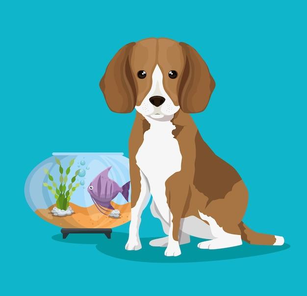 Bol aquarium avec poisson et chien