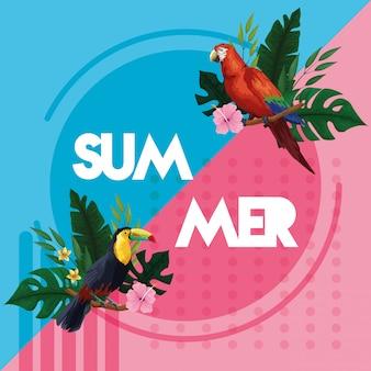 Bonjour carte de l'été