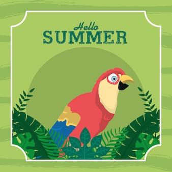 Bonjour carte d'été