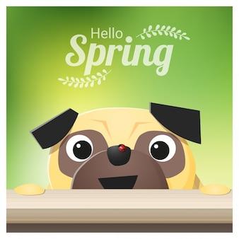 Bonjour fond de saison de printemps avec chien carlin