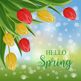 Bonjour printemps avec tulipes en fleurs
