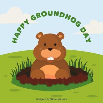 Bonne marmotte day background