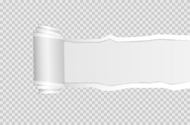 Bord de papier déchiré. bandes de papier blanches horizontales carrées déchirées.