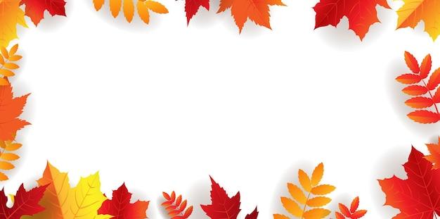 Bordure d'automne avec des feuilles lumineuses