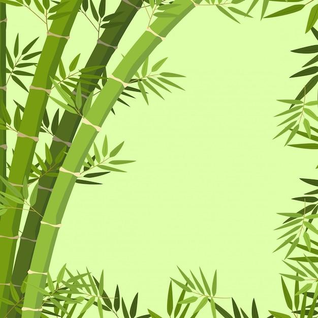 Une bordure de bambou verte