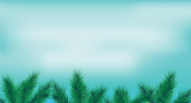 Bordure avec des branches de sapin vert et des lumières sur la bannière de plantes à feuilles persistantes de pin de ciel bleu