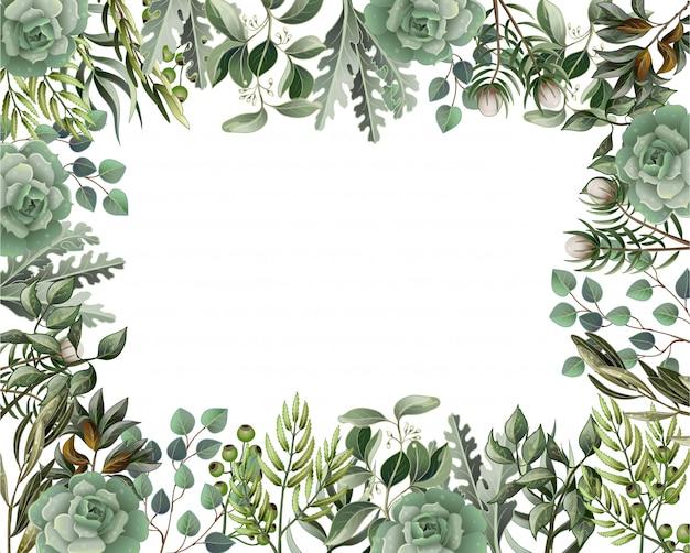 Bordure et cadre avec feuilles et succulentes