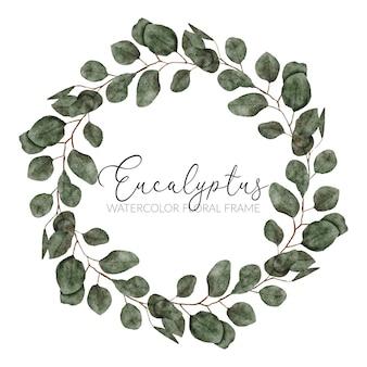 Bordure de cercle peinte à la main avec aquarelle d'eucalyptus