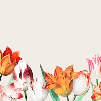 Bordure de champ de tulipes