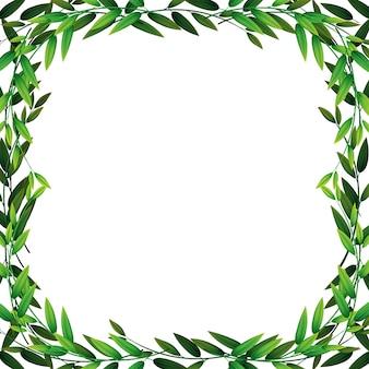 Une bordure de feuille de nature