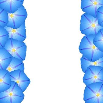 Bordure de fleur bleue de matin de gloire
