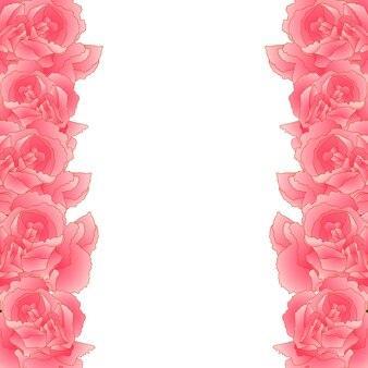 Bordure de fleur d'oeillet rose