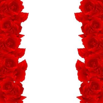 Bordure de fleur d'oeillet rouge