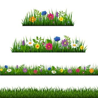 Bordure d'herbe avec collection de fleurs isolée