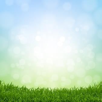 Bordure d'herbe de printemps