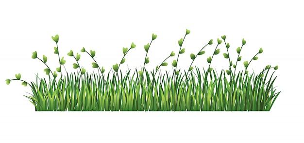Bordure d'herbe verte. feuilles vertes fraîches et herbe de branches. isolé sur fond transparent. illustration à utiliser comme élément de conception
