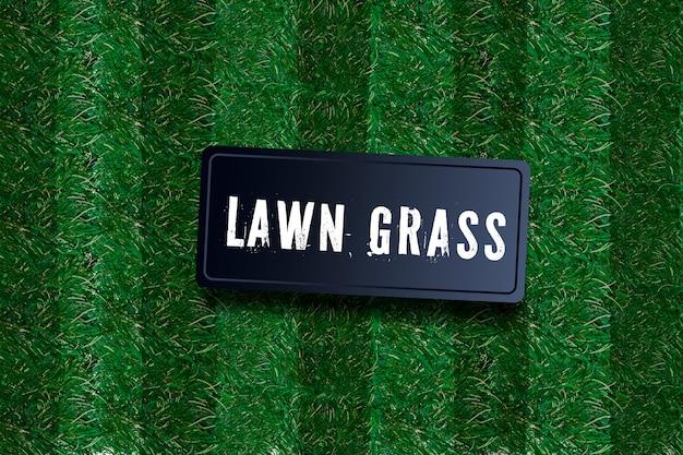 Bordure d'herbe verte