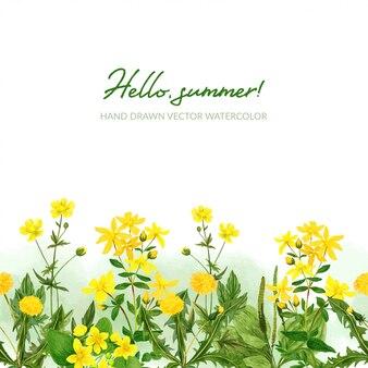 Bordure transparente aquarelle, fleurs sauvages et herbes sur le terrain