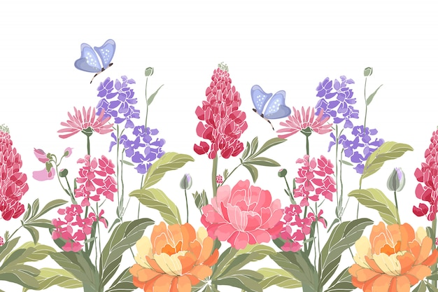 Bordure transparente florale.