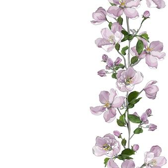 Bordure transparente verticale florale de fleurs rose pâle sur les branches, fleur de pommier.