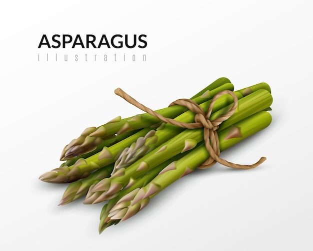 Botte d'asperges vertes fraîches