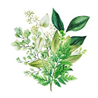 Bouquet d'aquarelle à base de plantes avec fougères et adiantum
