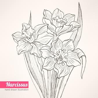 Bouquet au narcisse