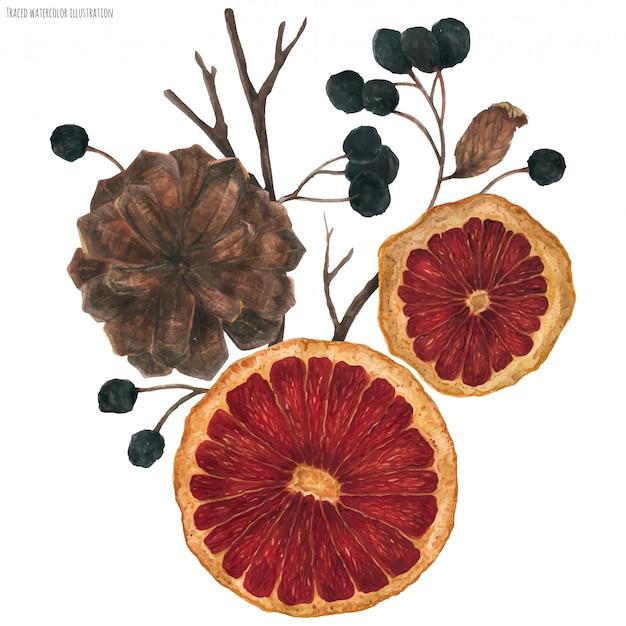 Bouquet de noël avec des oranges séchées et des plantes d'hiver