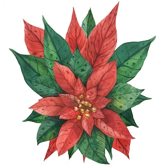 Bouquet de noël de poinsettia