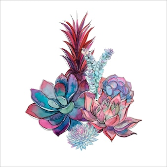 Bouquet de plantes succulentes
