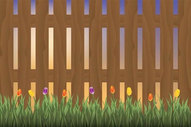 Bouquet de tulipes colorées sur fond en bois. rouge et blanc. vue de dessus avec un espace pour votre texte