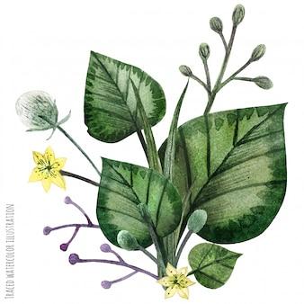 Boutonnière aquarelle peinte à la main de wild plants