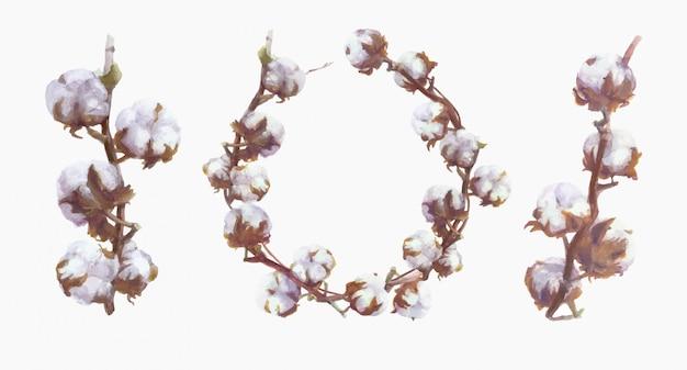 Branche d'aquarelle de coton et peinture de couronne. ensemble botanique dessiné à la main
