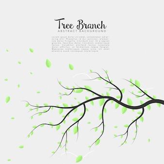 Branche d'arbre sur fond isolé