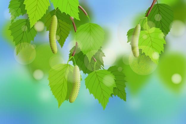 Branche de bouleau avec des feuilles de printemps frais contre le ciel bleu