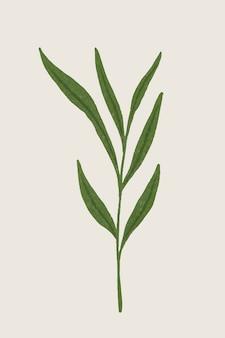 Branche avec élément de conception de feuilles vertes