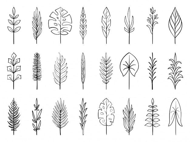 Branche fleurie dessinés à la main fleur, jeu de lignes doodle feuille tropicale, collection de brosse de plante