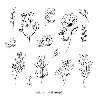 Branche de fleurs et feuilles dessinées à la main
