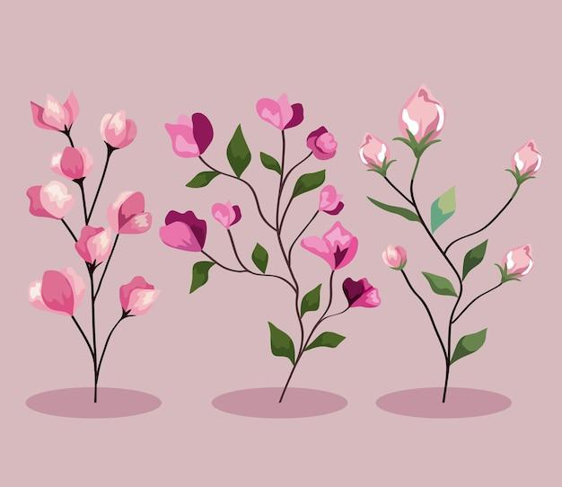Branche de fleurs avec jeu de feuilles