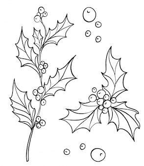 Branche de houx dessiné à la main avec des baies de houx. décoration traditionnelle du nouvel an et de noël. dessin au trait d'encre noir et blanc.