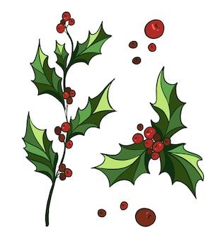 Branche de houx dessiné à la main avec des baies de houx rouges. décoration traditionnelle du nouvel an et de noël.