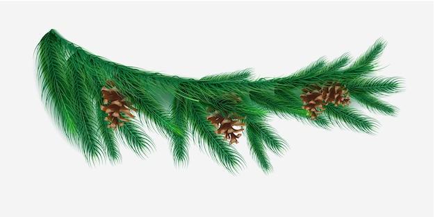 Branche de noël réaliste avec illustration de cônes