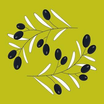 Branche d'olivier. illustration plate.