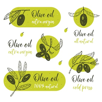 Branche d'olivier avec lettrage illustration dessinée à la main