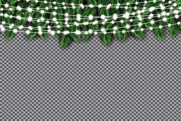 Branche de sapin avec néons sur fond transparent.