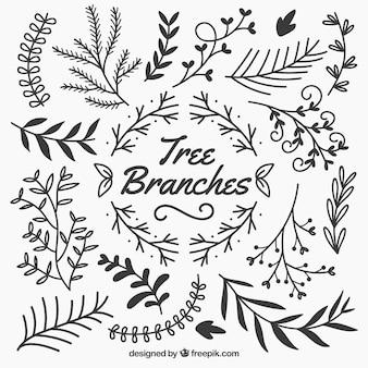 Branches d'arbres sketchy
