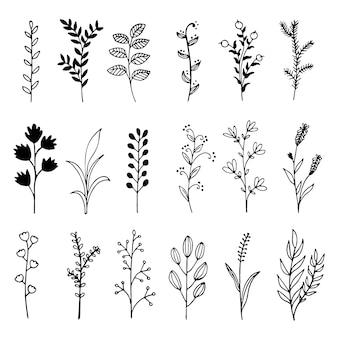 Branches dessinées à la main avec des feuilles vecteur doodle