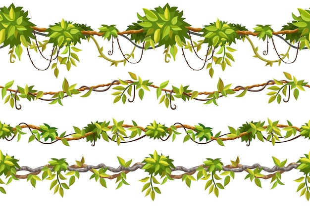 Branches de liane de bordure transparente motif lierre