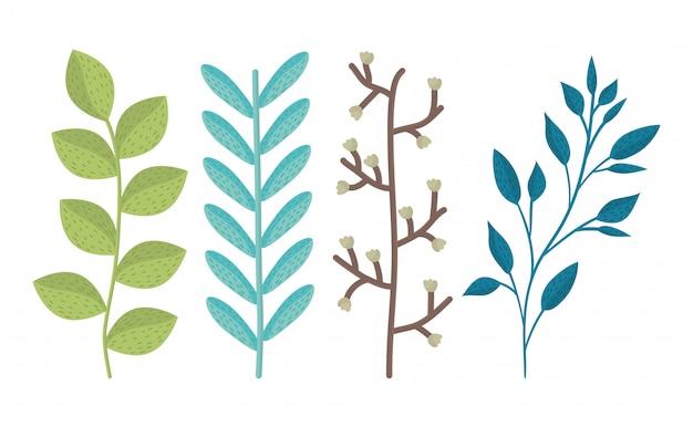 Branches de printemps avec feuilles