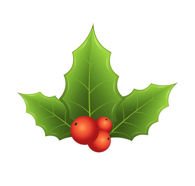 Brindille de houx avec des feuilles et des baies rouges sur fond blanc. symbole traditionnel festif, décoration pour couronne de nouvel an.